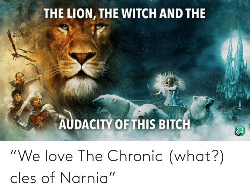 "Lion: THE LION, THE WITCH AND THE  AUDACITY OF THIS BITCH ""We love The Chronic (what?) cles of Narnia"""