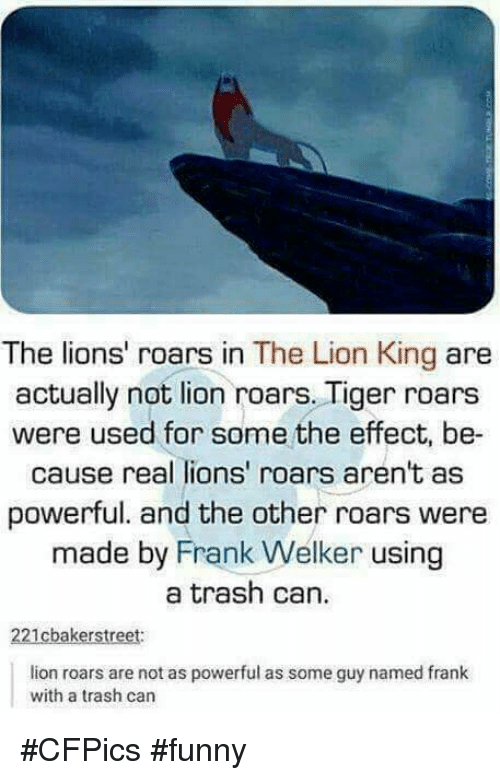 lion roar: The lions' roars in The Lion King are  actually not lion roars. Tiger roars  were used for some the effect, be-  cause real lions' roars aren't as  powerful. and the other roars were  made by Frank Welker using  a trash can.  221cbakerstreet:  lion roars are not as powerful as some guy named frank  with a trash can #CFPics #funny