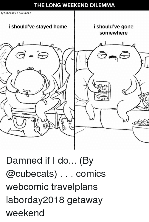 Memes, Buzzfeed, and Home: THE LONG WEEKEND DILEMMA  Q CUBECATS BUzzFEED  i should've stayed home  i should've gone  somewhere  EESE  CH Damned if I do... (By @cubecats) . . . comics webcomic travelplans laborday2018 getaway weekend