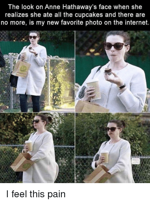 Internet, Cupcakes, and Girl Memes: The look on Anne Hathaway's face when she  realizes she ate all the cupcakes and there are  no more, is my new favorite photo on the internet. I feel this pain