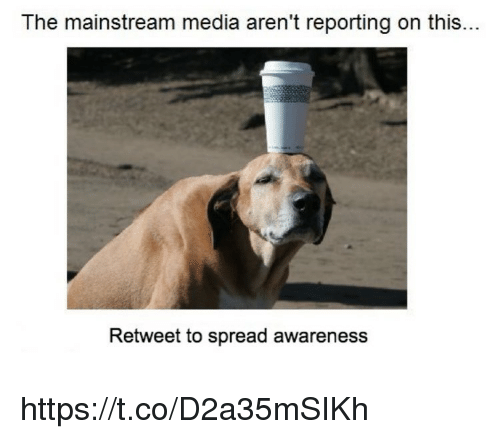 Spreaded: The mainstream media aren't reporting on this...  Retweet to spread awareness https://t.co/D2a35mSIKh