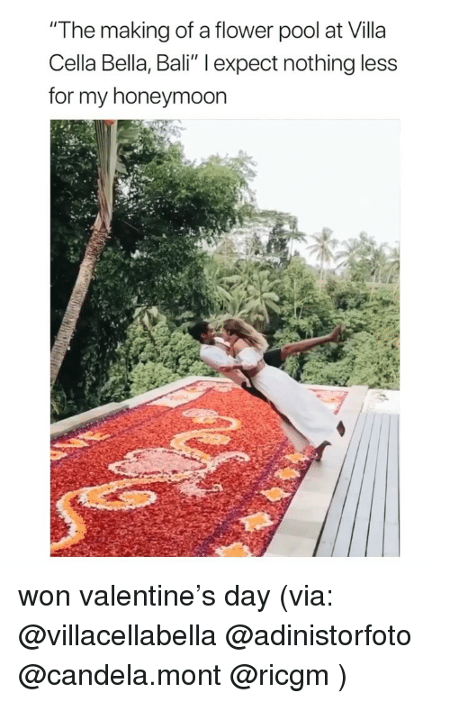 """Honeymoon, Bali, and Flower: """"The making of a flower pool at Villa  Cella Bella, Bali"""" l expect nothing less  for my honeymoon won valentine's day (via: @villacellabella @adinistorfoto @candela.mont @ricgm )"""