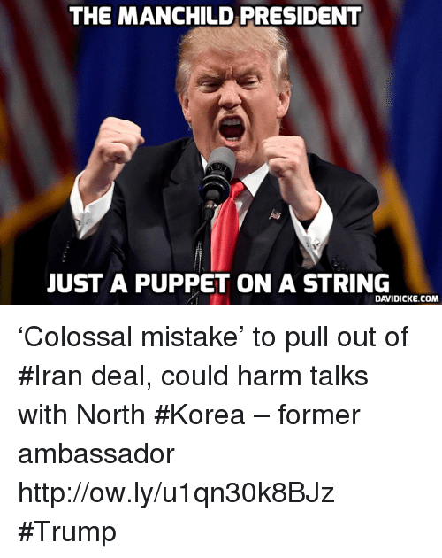 The Manchild President Just A Puppet On A String Davidickecom