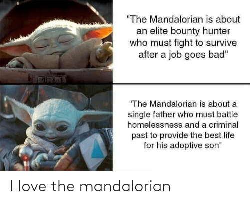 "Bad, Life, and Love: ""The Mandalorian is about  an elite bounty hunter  who must fight to survive  after a job goes bad""  ""The Mandalorian is about a  single father who must battle  homelessnesss and a criminal  past to provide the best life  for his adoptive son"" I love the mandalorian"