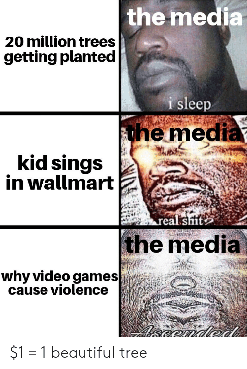 Beautiful, Video Games, and Games: the media  20 million trees  getting planted  i sleep  the media  kid sings  in wallmart  real sit  the media  why video games  cause violence  eonded $1 = 1 beautiful tree