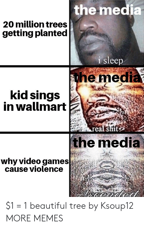 Beautiful, Dank, and Memes: the media  20 million trees  getting planted  i sleep  the media  kid sings  in wallmart  real sit  the media  why video games  cause violence  eonded $1 = 1 beautiful tree by Ksoup12 MORE MEMES