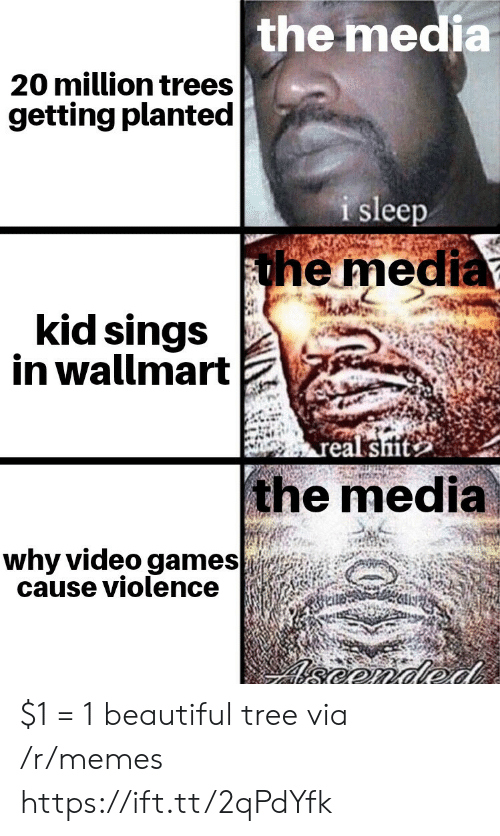 Beautiful, Memes, and Video Games: the media  20 million trees  getting planted  i sleep  the media  kid sings  in wallmart  real sit  the media  why video games  cause violence  eonded $1 = 1 beautiful tree via /r/memes https://ift.tt/2qPdYfk
