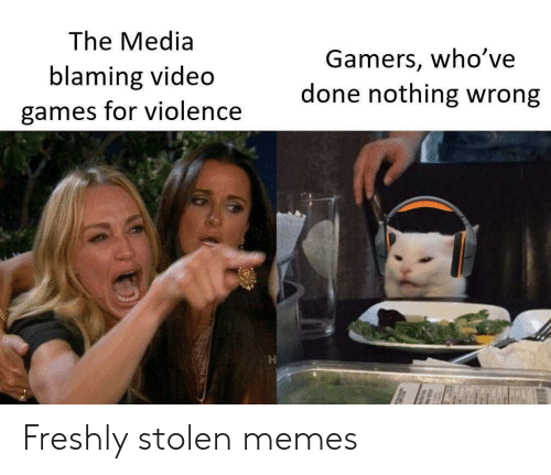 Memes, Video Games, and Games: The Media  Gamers, who've  done nothing wrong  blaming video  games for violence Freshly stolen memes