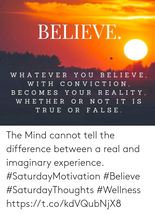 Mind: The Mind cannot tell the difference between a real  and imaginary experience.   #SaturdayMotivation #Believe  #SaturdayThoughts #Wellness https://t.co/kdVQubNjX8