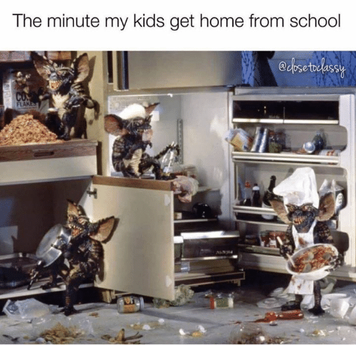 Memes, Home, and Kids: The minute my kids get home from schodol