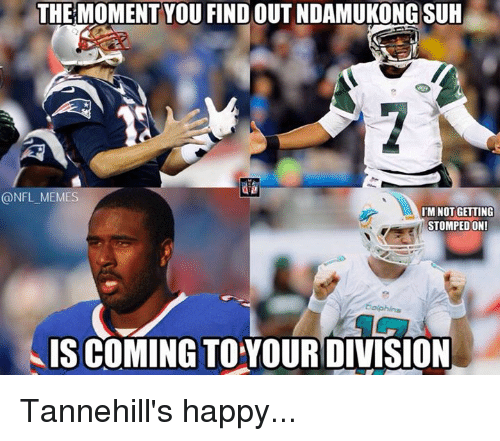 Nfl, Ndamukong Suh, and Suh: THE MOMENT YOU FIND OUT NDAMUKONG SUH  @NFL MEMES  IM NOT GETTING  STOMPED ON!  Dolphins  IS COMING TOYOURDIVISION Tannehill's happy...