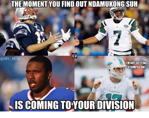 Memes, Nfl, and Dolphins: THE MOMENT YOU FIND OUT NDAMUKONG SUH  @NFL MEMES  IM NOT GETTING  STOMPEDON!  Dolphins  IS COMING TOYOURDIVISION