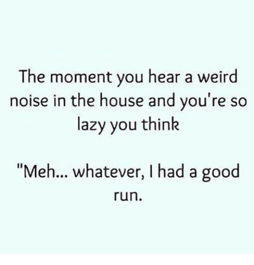 The Moment You Hear a Weird Noise in the House and You're So