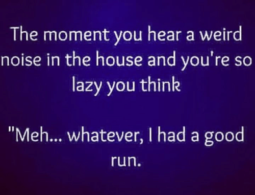 """meh: The moment you hear a weird  noise in the house and you're so  lazy you think  """"Meh... whatever, I had a good  run"""