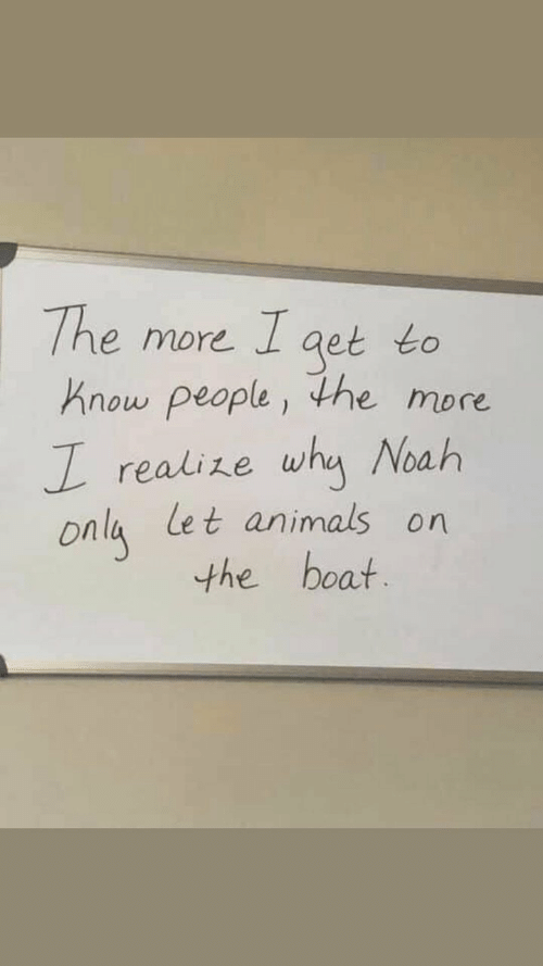 Animals, Noah, and Boat: The more I aet to  Know people, the more  realize why Noah  Onla Let animals on  the boat