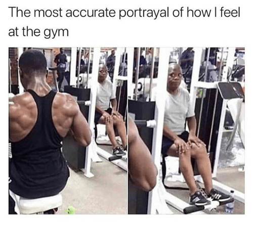 Gym, Memes, and 🤖: The most accurate portrayal of how I feel  at the gym