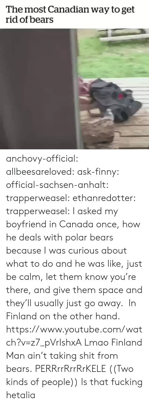 hetalia: The most Canadian way to get  rid of bears anchovy-official: allbeesareloved:  ask-finny:  official-sachsen-anhalt:  trapperweasel:   ethanredotter:  trapperweasel: I asked my boyfriend in Canada once, how he deals with polar bears because I was curious about what to do and he was like, just be calm, let them know you're there, and give them space and they'll usually just go away. In Finland on the other hand. https://www.youtube.com/watch?v=z7_pVrIshxA  Lmao Finland Man ain't taking shit from bears.   PERRrrRrrRrKELE  ((Two kinds of people))   Is that fucking hetalia