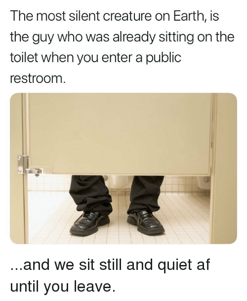 Af, Memes, and Earth: The most silent creature on Earth, is  the guy who was already sitting on the  toilet when you enter a public  restroom ...and we sit still and quiet af until you leave.