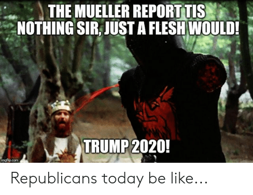 Be Like, Politics, and Today: THE MUELLER REPORT TIS  NOTHING SIR, JUST A FLESH WOULD!  TRUMP 2020!  imgflip.com Republicans today be like...