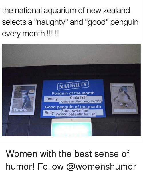 "swimmer: the national aquarium of new zealand  selects a ""naughty"" and ""good"" penguin  every month!!!!  NAUGHTY  Penquin of the monthh  Timmy  Stole fish  Pushed another penguin over  Timmy  Good penquin of the month  Good swimmer  Betty Waited patiently for fish Women with the best sense of humor! Follow @womenshumor"