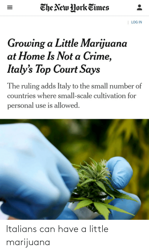 New York: The New York Times  | LOG IN  Growing a Little Marijuana  at Home Is Not a Crime,  Italy's Top Court Says  The ruling adds Italy to the small number of  countries where small-scale cultivation for  personal use is allowed.  II Italians can have a little marijuana