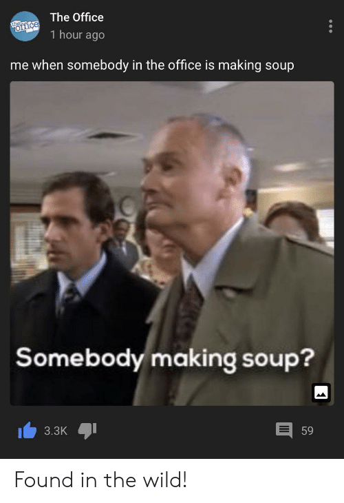The Office, Office, and Wild: The Office  thec  office  1 hour ago  me when somebody in the office is making soup  Somebody making soup?  3.3K  59 Found in the wild!