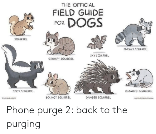 guide: THE OFFICIAL  FIELD GUIDE  FOR DOGS  SOUIRREL  SNEAKY SQUIRREL  SKY SQUIRREL  GRUMPY SQUIRREL  DRAMATIC SQUIRREL  SPICY SQUIRREL  BOUNCY SQUIRREL  DANGER SQUIRREL  OMEGAN MOKAT  DOOPLEFORFOODCOM Phone purge 2: back to the purging