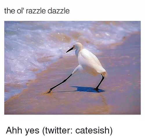 ols: the ol' razzle dazzle Ahh yes (twitter: catesish)