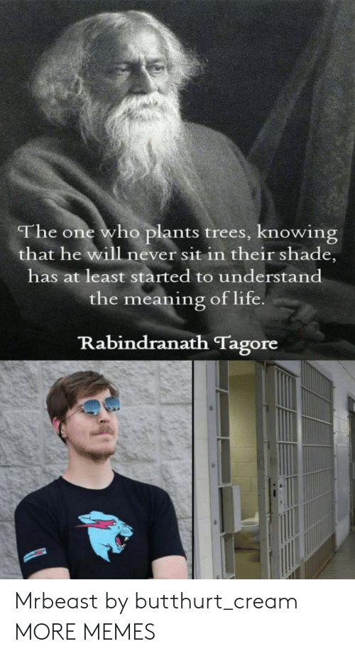 Butthurt: The one who plants trees, knowing  that he will never sit in their shade,  has at least started to understand  the meaning of life  Rabindranath Tagore Mrbeast by butthurt_cream MORE MEMES
