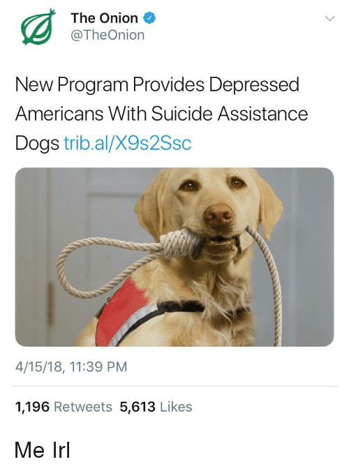 Dogs, The Onion, and Onion: The Onion  @TheOnion  New Program Provides Depressed  Americans With Suicide Assistance  Dogs trib.al/X9s2Ssc  4/15/18, 11:39 PM  1,196 Retweets 5,613 Likes Me Irl