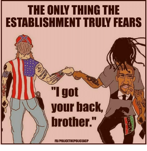 """got your back: THE ONLY THING THE  ESTABLISHMENT TRULY FEARS  """"I got  your back,  brother.""""  FB/POLICETHEPOLICEACP"""