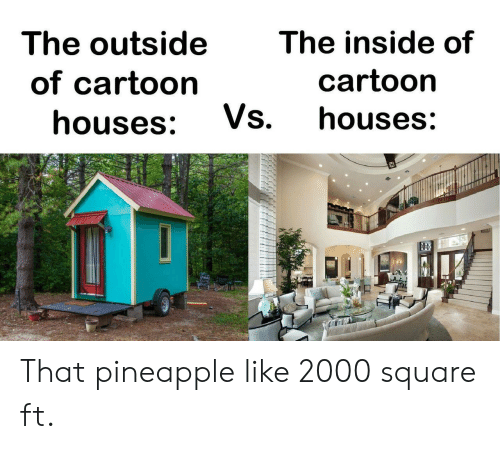Cartoon, Pineapple, and Square: The outside  The inside of  cartoon  of cartoon  Vs.  houses:  houses: That pineapple like 2000 square ft.