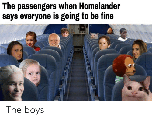Boys, Fine, and Everyone: The passengers when Homelander  says everyone is going to be fine The boys