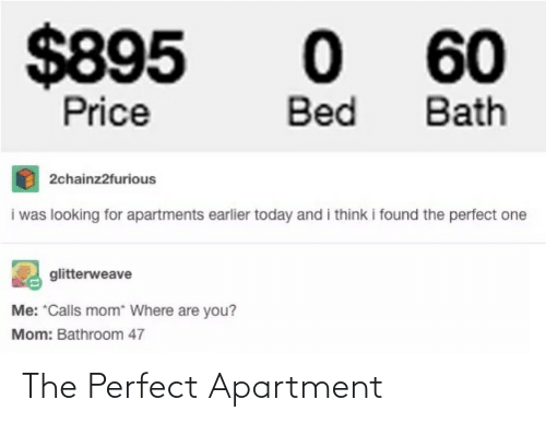 apartment: The Perfect Apartment
