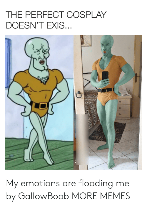 Dank, Memes, and Target: THE PERFECT COSPLAY  DOESN'T EXIS... My emotions are flooding me by GallowBoob MORE MEMES