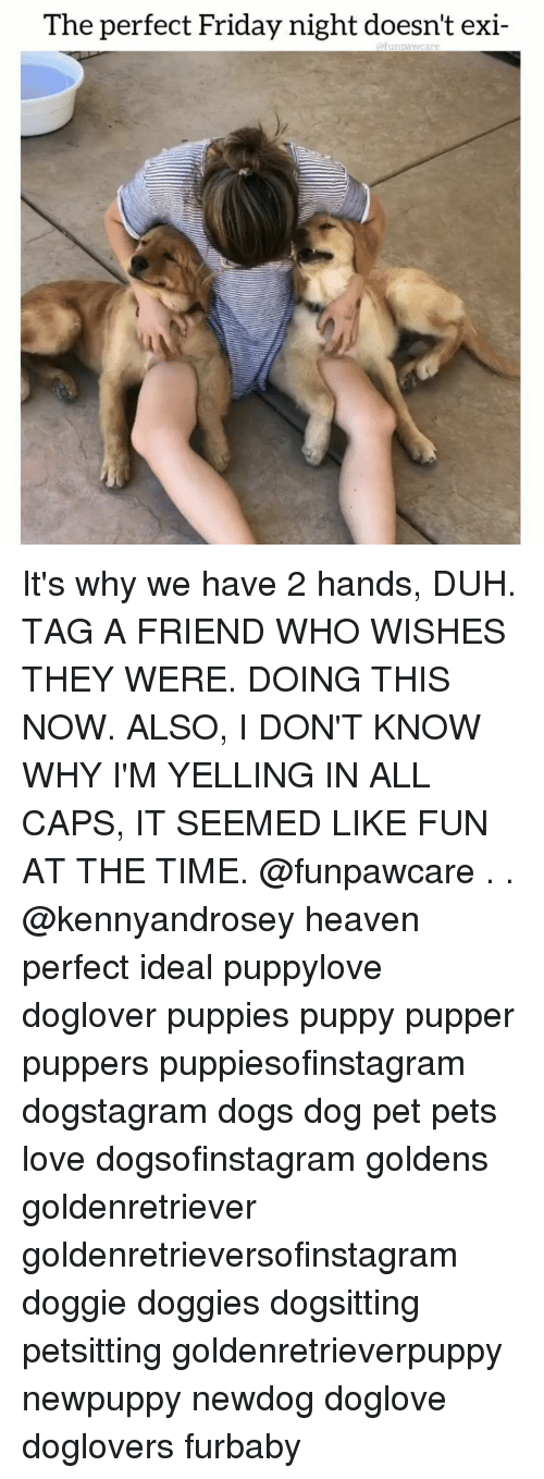 tag a friend who: The perfect Friday night doesn't exi- It's why we have 2 hands, DUH. TAG A FRIEND WHO WISHES THEY WERE. DOING THIS NOW. ALSO, I DON'T KNOW WHY I'M YELLING IN ALL CAPS, IT SEEMED LIKE FUN AT THE TIME. @funpawcare . . @kennyandrosey heaven perfect ideal puppylove doglover puppies puppy pupper puppers puppiesofinstagram dogstagram dogs dog pet pets love dogsofinstagram goldens goldenretriever goldenretrieversofinstagram doggie doggies dogsitting petsitting goldenretrieverpuppy newpuppy newdog doglove doglovers furbaby