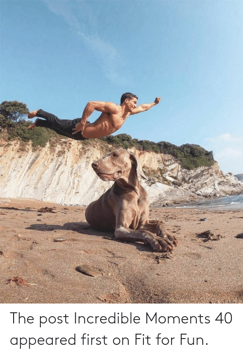 incredible: The post Incredible Moments 40 appeared first on Fit for Fun.