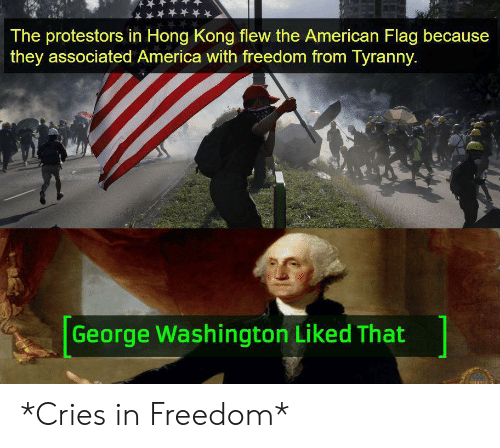 America, American, and American Flag: The protestors in Hong Kong flew the American Flag because  they associated America with freedom from Tyranny.  George Washington Liked That *Cries in Freedom*
