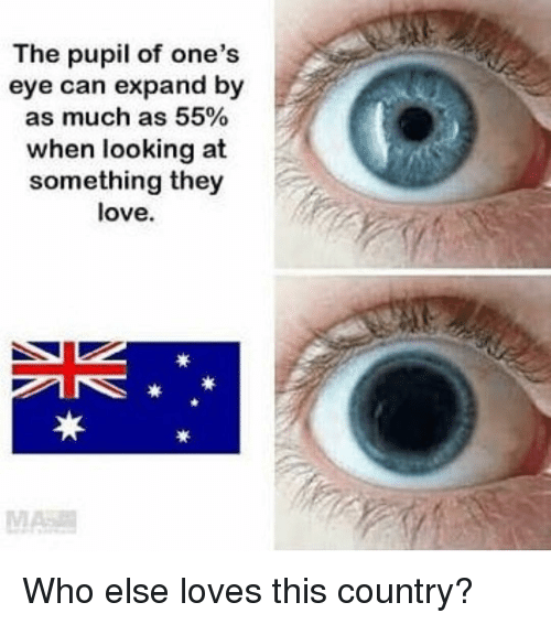 Pupil: The pupil of one's  eye can expand by  as much as 55%  when looking at  something they  love. Who else loves this country?