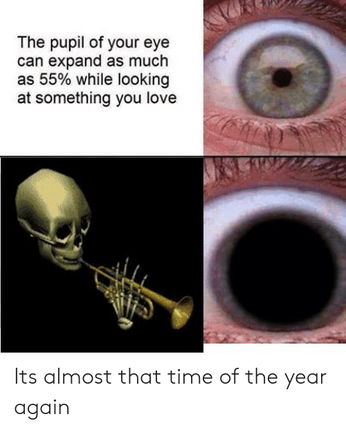 Pupil: The pupil of your eye  can expand as much  as 55% while looking  at something you love Its almost that time of the year again