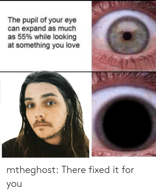 Pupil: The pupil of your eye  can expand as much  as 55% while looking  at something you love mtheghost: There fixed it for you