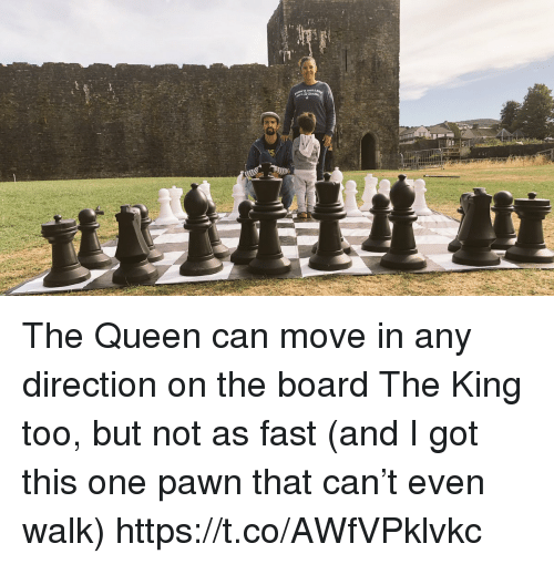 pawn: The Queen can move in any direction on the board The King too, but not as fast (and I got this one pawn that can't even walk) https://t.co/AWfVPklvkc
