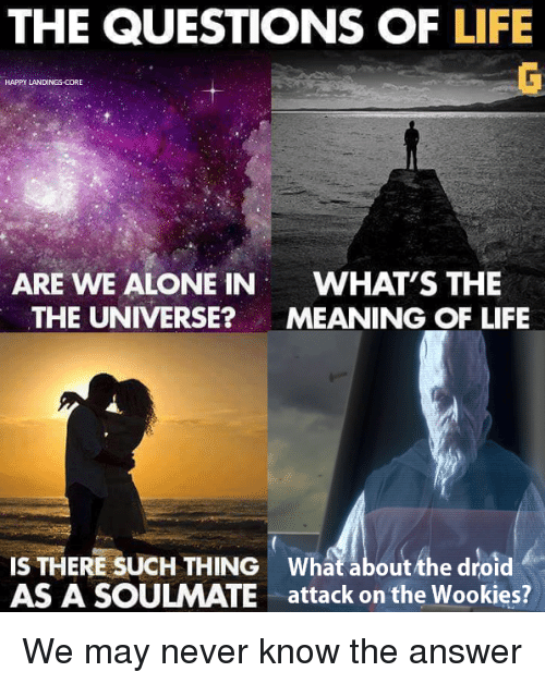 answeres: THE QUESTIONS OF LIFE  HAPPY LANDINGS-CORE  ARE WE ALONE IN  WHAT'S THE  THE UNIVERSE?MEANING OF LIFE  IS THERE SUCH THING What about the droid  AS A SOULMATE attack on the Wookies? We may never know the answer