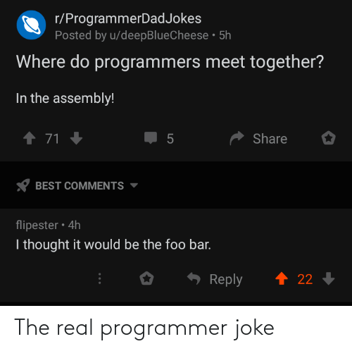 programmer: The real programmer joke