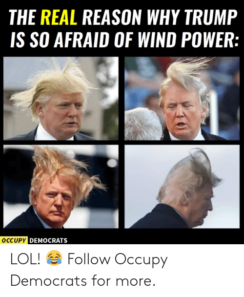 Occupy Democrats: THE REAL REASON WHY TRUMP  IS SO AFRAID OF WIND POWER:  DEMOCRATS LOL! 😂  Follow Occupy Democrats for more.