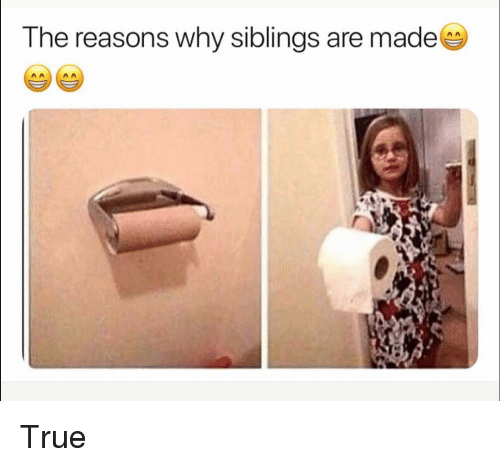 Funny, True, and Why: The reasons why siblings are made True