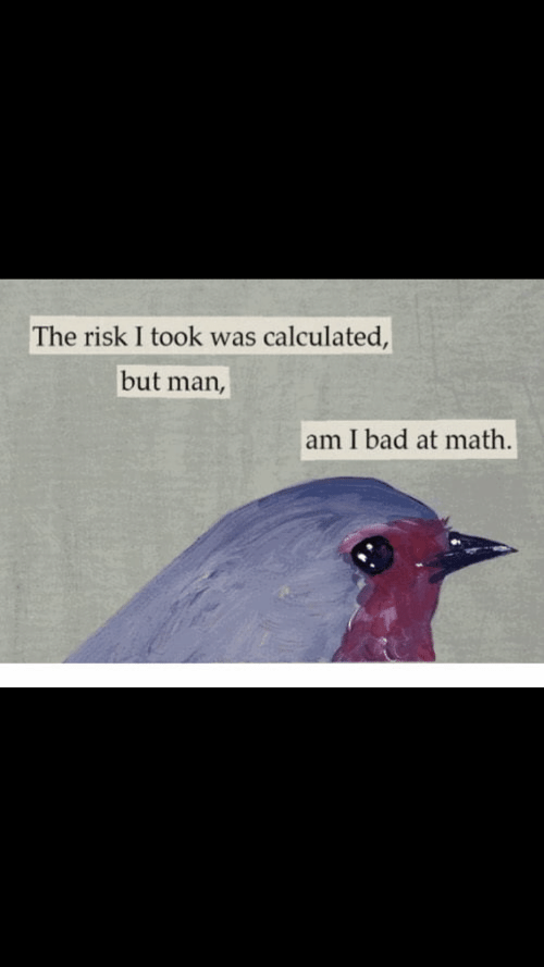 But Man Am I Bad At Math: The risk I took was calculated,  but man,  am I bad at math.