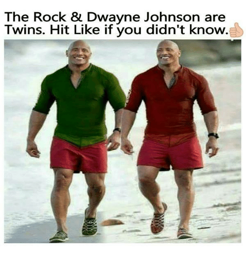 The Rock Dwayne Johnson Are Twins Hit Like If You Didnt Know
