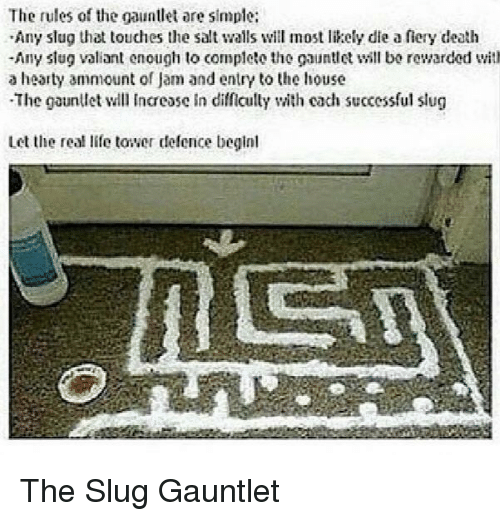 slug: The rules of the gauntlet are simple:  Any slug that touches the salt walls will most likely die a fiery death  -Any slug valiant enough to complete the gauntll bo rewarded with  a hearty ammount of Jam and entry to the house  The gaunllet l Incease in difficully with cach successful slug  Let the real life tower defence beginl The Slug Gauntlet