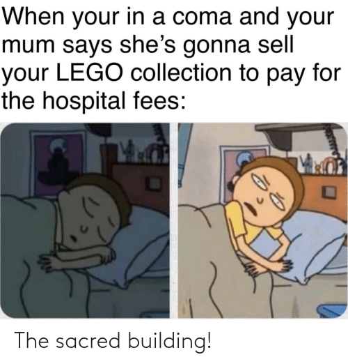 building: The sacred building!